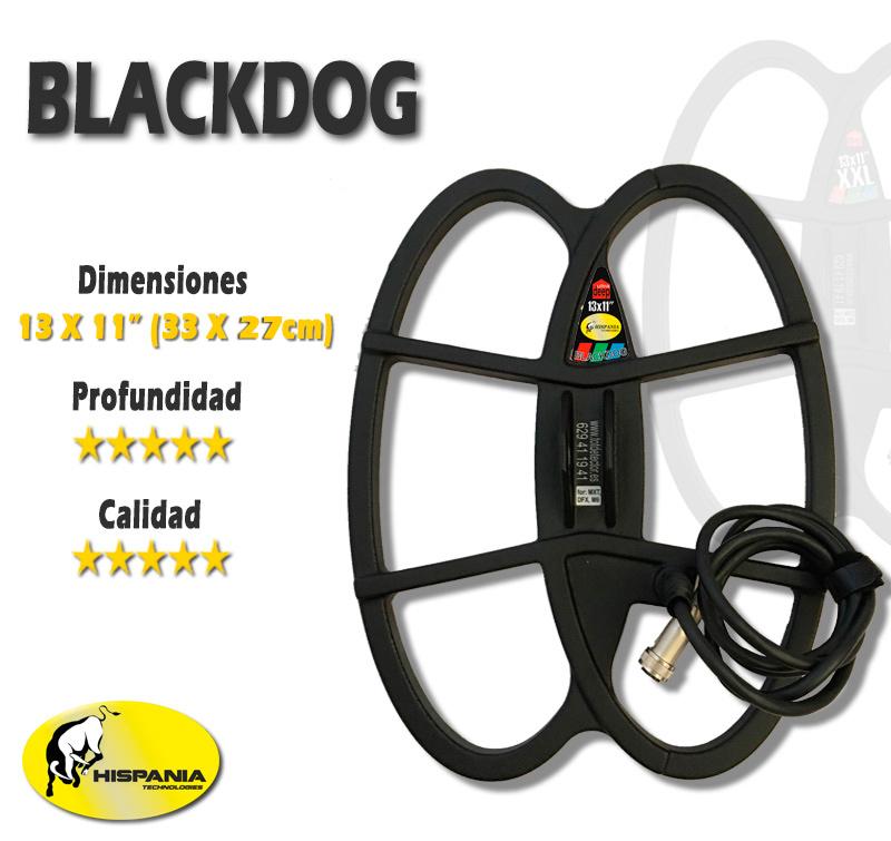 Plato Black Dog